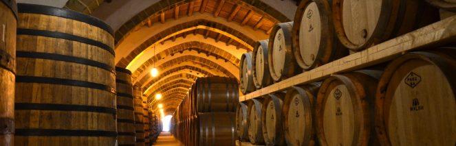 Software gestionale aziende vino
